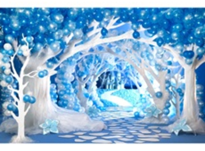 Madelia Jr Winter Wonderland Prom Schwan S Cares