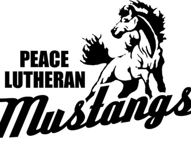 1400681373mustang_logo