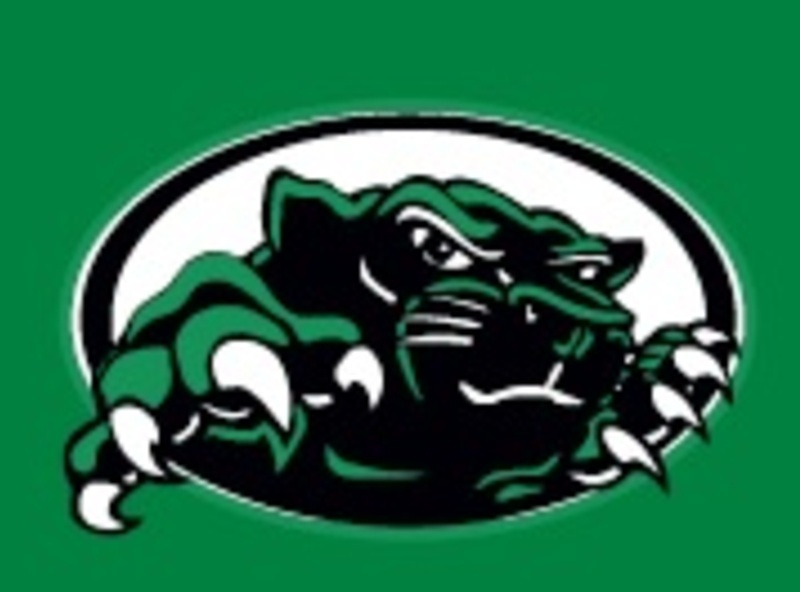 1410172821panther_logo_on_green